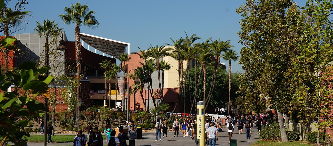 Photo of Main Walkway