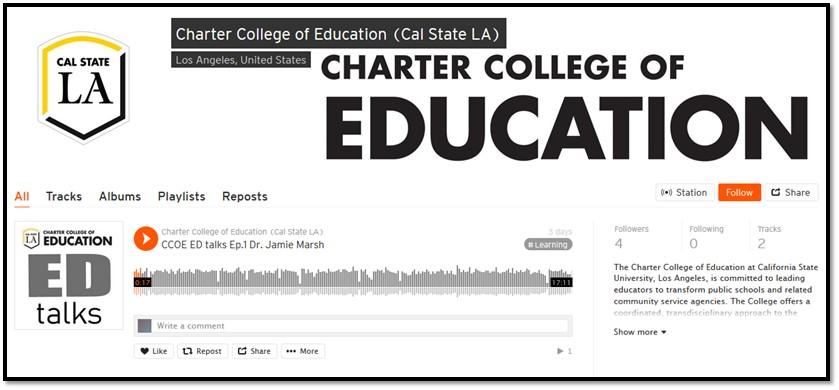 Image of CCOE ED talks Podcast