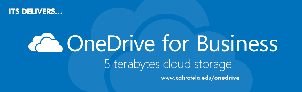 OneDrive for Business. 5 terabyte cloud storage.