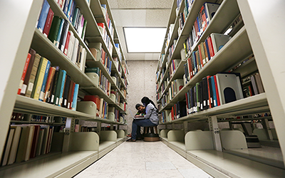 Researchers at work in the library