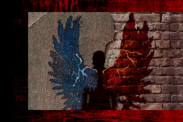A shadow of a person on a brick wall with one red wing and one blue wing.