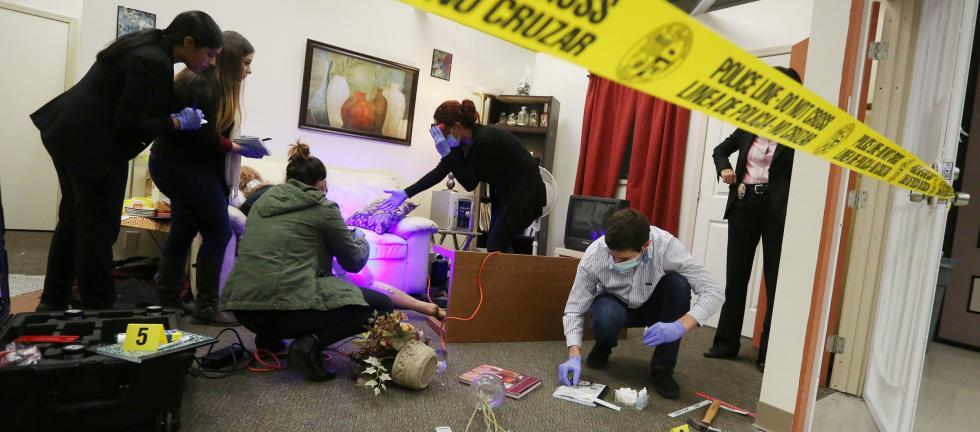 Criminalistics lab simulation