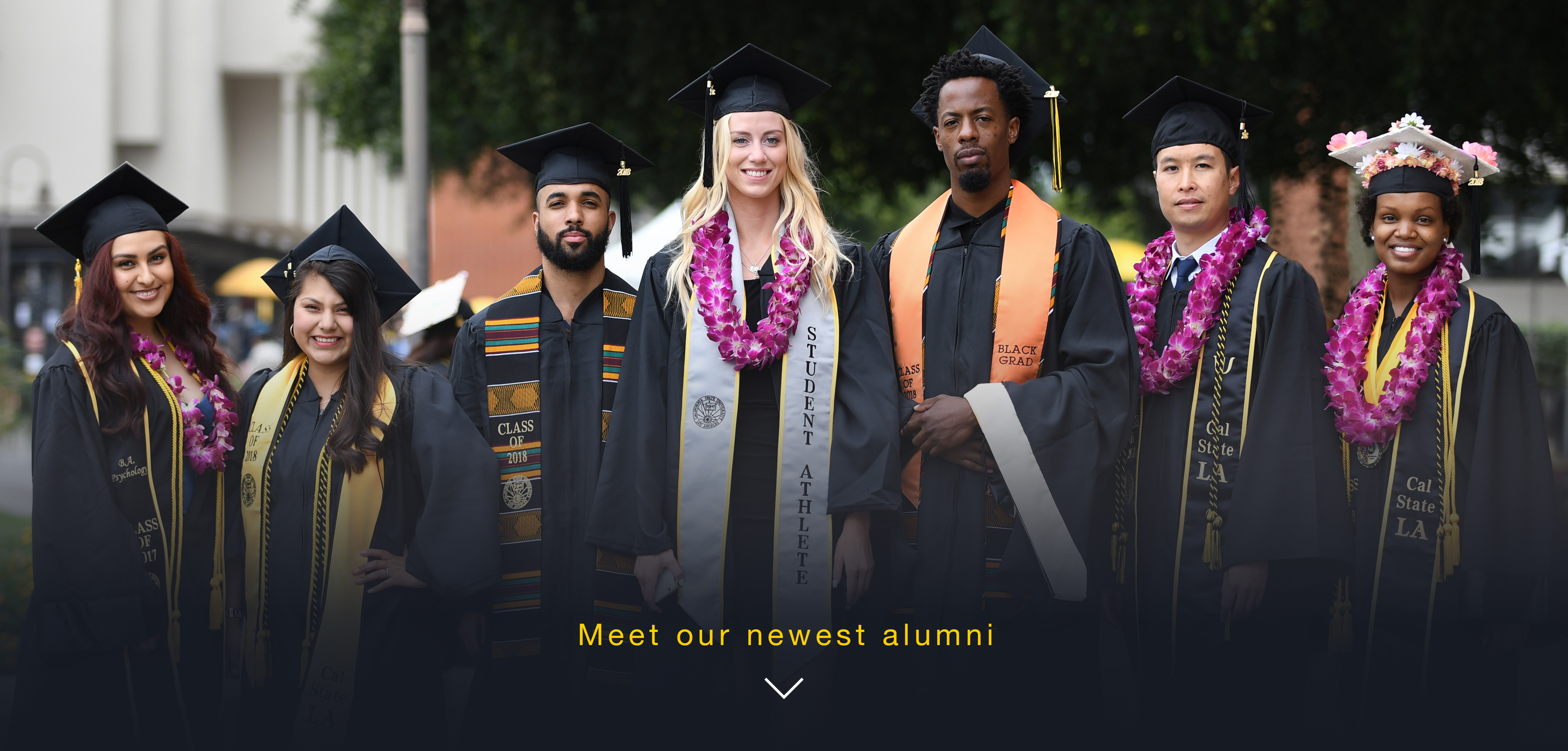 Explore, connect, and engage with the University and the alumni community through the Alumni Association