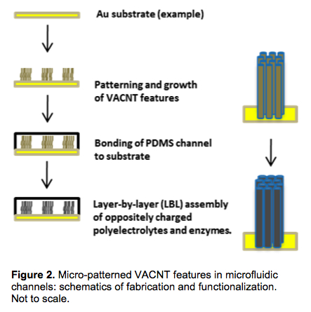 Figure 2. Micro-patterned VACNT features in microfluidic channels: schematics of fabrication and functionalization. Not to scale.